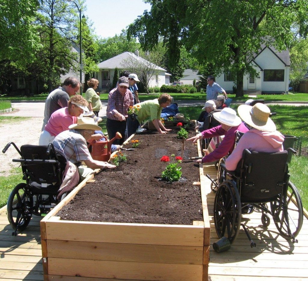 MCGSeniors Planting